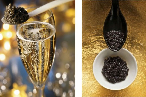 New level of relaxation: blissful caviar tour for body and soul